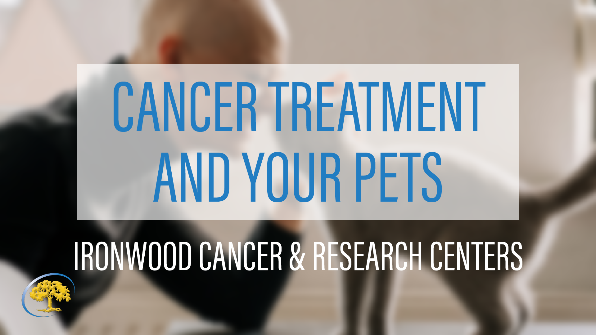 Dr. Robert Yoo Cancer Treatment and Your Pets